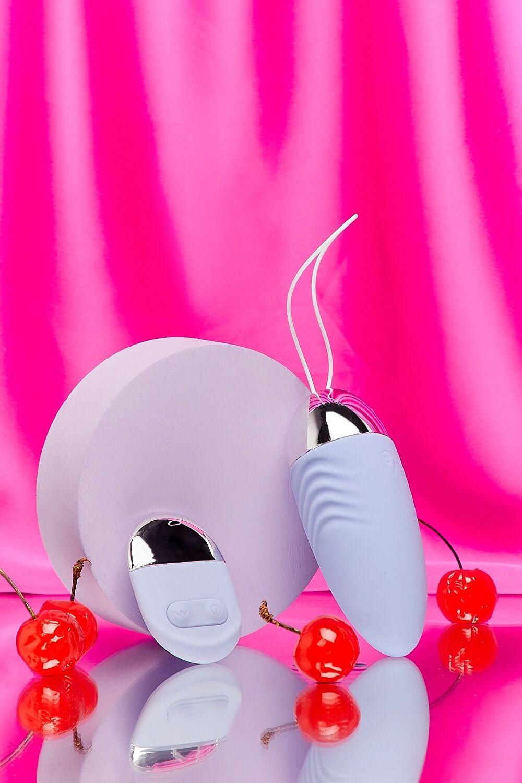 Pleasure Egg Vibrator And Remote